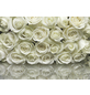 KOMAR Foto-Papiertapete »A la Rose«, Breite 368 cm, inkl. Kleister-Thumbnail
