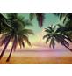 KOMAR Foto-Papiertapete »Miami«, Breite 368 cm, inkl. Kleister-Thumbnail