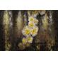 KOMAR Foto-Papiertapete »Serafina«, Breite 368 cm, inkl. Kleister-Thumbnail
