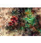 KOMAR Foto-Papiertapete »Sherazade«, Breite 368 cm, inkl. Kleister-Thumbnail