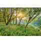 KOMAR Foto-Papiertapete »Spring Lake«, Breite 368 cm, inkl. Kleister-Thumbnail