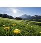 KOMAR Foto-Vliestapete »Alpenglück«, Breite 400 cm, seidenmatt-Thumbnail