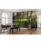 KOMAR Foto-Vliestapete »Blütenzauberwald«, Breite 450 cm, seidenmatt-Thumbnail