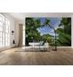 KOMAR Foto-Vliestapete »Cast Away Jungle «, Breite 450 cm, seidenmatt-Thumbnail
