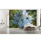 KOMAR Foto-Vliestapete »Coconut Heaven «, Breite 450 cm, seidenmatt-Thumbnail