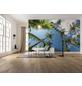 KOMAR Foto-Vliestapete »Coconut Heaven II «, Breite 450 cm, seidenmatt-Thumbnail