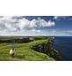 KOMAR Foto-Vliestapete »Green Ireland«, Breite 450 cm, seidenmatt-Thumbnail
