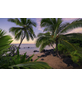 KOMAR Foto-Vliestapete »Hawaiian Dreams «, Breite 450 cm, seidenmatt-Thumbnail