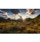 KOMAR Foto-Vliestapete »Herbstwelten«, Breite 450 cm, seidenmatt-Thumbnail