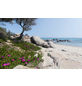 KOMAR Foto-Vliestapete »Mediterrane Träume«, Breite 450 cm, seidenmatt-Thumbnail