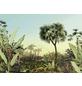 KOMAR Foto-Vliestapete »Oasis«, Breite 350 cm, seidenmatt-Thumbnail
