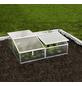 VITAVIA Frühbeet »Gaia 2X«, B x L x H: 102.3 x 120.5 x 38.9 cm, Aluminium-Thumbnail