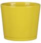 SCHEURICH Frühlingstopf »SPRING«, Höhe: 10,5 cm, gelb, Keramik-Thumbnail