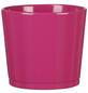 SCHEURICH Frühlingstopf »SPRING«, Höhe: 10,5 cm, pink, Keramik-Thumbnail
