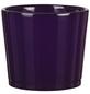 SCHEURICH Frühlingstopf »SPRING«, Höhe: 10,5 cm, violett, Keramik-Thumbnail