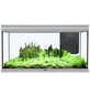 Fusion 120x50 2.0 Aquarium-Thumbnail