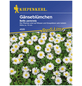 KIEPENKERL Gänseblümchen, Bellis perennis, Samen, Blüte: weiß-Thumbnail