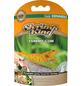 DENNERLE Garnelenfutter »Shrimp King Yummy Gum«, 55 g à 50 g-Thumbnail