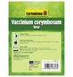 GARTENKRONE Garten-Heidelbeere Vaccinium corymbosum »Ama«-Thumbnail