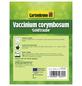GARTENKRONE Garten-Heidelbeere Vaccinium corymbosum »Goldtraube«-Thumbnail