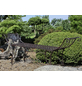 GARDEN PLEASURE Gartenbank »Semeru«, 2-Sitzer, B x T x H: 172 x 42 x 69 cm-Thumbnail
