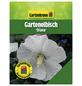 GARTENKRONE Garteneibisch, Hibiscus syriacus »Diana«, weiß, winterhart-Thumbnail