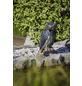 HEISSNER Gartenfigur, Eule, Höhe: 40  cm, Kunststoff, schwarz/braun-Thumbnail