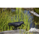 HEISSNER Gartenfigur, Krähe, Höhe: 36  cm, Kunststoff, schwarz-Thumbnail