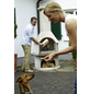BUSCHBECK Gartengrillkamin »Venezia«, BxTxH: 110x65x206cm-Thumbnail
