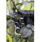 GARDENA Gartenhandschuhe, Größe: L(9), schwarzgrau, KeraTect-glasiert-Thumbnail