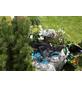 GARDENA Gartenpflege-Set, Kunststoff, anthrazit/tuerkis-Thumbnail