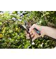 GARDENA Gartenschere »B/S-XL«-Thumbnail