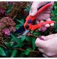 CON:P Gartenschere, Bypass, max. Aststärke 8 mm-Thumbnail