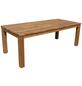GARDEN PLEASURE Gartentisch »Pala«, mit Akazienholz-Tischplatte, BxTxH: 220 x 100 x 78 cm-Thumbnail