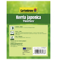 GARTENKRONE Gefüllter Ranunkelstrauch, Kerria japonica »Pleniflora«, gelb, winterhart-Thumbnail