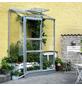 HALLS Gewächshaus »Altan«, 0,91 m², Aluminium/Glas, winterfest-Thumbnail