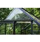HALLS Gewächshaus »Altan«, 0,91 m², Kunststoff/Aluminium-Thumbnail
