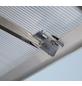 VITAVIA Gewächshaus »Apollo«, B x L x H: 195  x 323,2  x 207,4  cm, Aluminium/Polycarbonat (PC)-Thumbnail