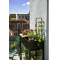 JULIANA Gewächshaus, B x L x H: 71  x 33  x 142  cm, Aluminium-Thumbnail