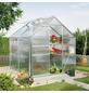 VITAVIA Gewächshaus »Calypso«, 3 m², Kunststoff/Aluminium, winterfest-Thumbnail