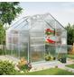 VITAVIA Gewächshaus »Calypso«, 4,4 m², Kunststoff/Aluminium, winterfest-Thumbnail