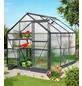 VITAVIA Gewächshaus »Calypso«, B x L x H: 195  x 232  x 197  cm, Aluminium/Polycarbonat (PC)-Thumbnail