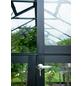 JULIANA Gewächshaus »Compact«, B x L x H: 224  x 296  x 226  cm, Aluminium/Polycarbonat (PC)-Thumbnail