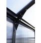PALRAM Gewächshaus »Glory«, 5,64 m², Kunststoff/Aluminium, winterfest-Thumbnail