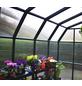 RION Gewächshaus »Grand Gardener«, B x T x H: 267 x 264 x 238 cm-Thumbnail