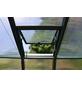 RION Gewächshaus »Grand Gardener«, B x T x H: 267 x 514 x 238 cm-Thumbnail