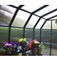 RION Gewächshaus »Grand Gardener«, B x T x H: 267 x 639 x 238 cm-Thumbnail