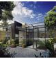 KGT Gewächshaus »Linea«, 6,45 m², Kunststoff/Aluminium, winterfest-Thumbnail