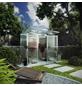 KGT Gewächshaus »Linea«, B x L x H: 233  x 110  x 220  cm-Thumbnail