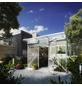 KGT Gewächshaus »Linea«, B x L x H: 297  x 220  x 220  cm, Aluminium/Polycarbonat (PC)-Thumbnail